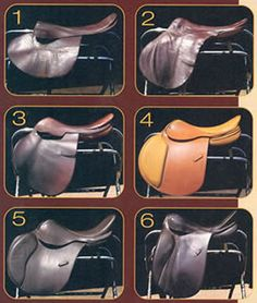How Saddle Design Affects Your Riding Form | Practical Horseman - article by Jim Wofford