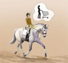 Horseback Riding Tips, Horse Riding Tips, Andalusian Horse, Friesian Horse, Arabian Horses, Equine Photography, Animal Photography, Connemara Pony, Black Horses