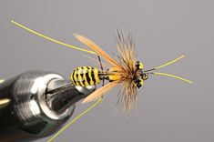 Cholo's yellow wasp. For more fly fishing info follow and subscribe www.theflyreelguide.com Also check out the original pinners site and support