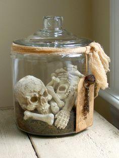 Bones  Skeleton In Apothecary Jar  on Etsy