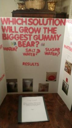 31 Best 4th Grade Science Projects Images Science Fair Science