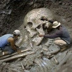 Giant human skeleton