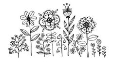 doodles of daisies