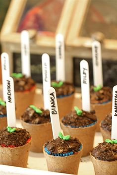 "Personalized ""little seedling"" Oreo cupcakes"