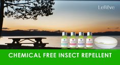 Le Reve Chemical Free Insect Repellent. Make your own natural insect repellent.