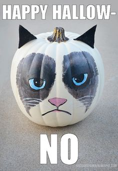 Another fun idea for a Halloween Pumpkin. at The Swell Life: Grumpy Cat Pumpkin Another fun idea for a Halloween Pumpkin. at The Swell Life: Grumpy Cat Pumpkin DIY Sac Halloween, Theme Halloween, Holidays Halloween, Halloween Pumpkins, Happy Halloween, Halloween Decorations, Halloween Humor, Halloween Costumes, Epic Costumes