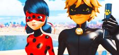 I do not own any of the characters or anything related to Ladybug! I just kinda wrote this story and I better not see you with this story, claiming it as your own on another place, or else!