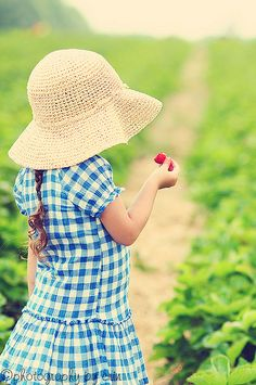 Strawberry Girl...love her gingham!