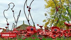 Prince Harry gives his backing to a community project to make poppies produce a memorial to the fallen of Rutland Water, Making 10, Nature Reserve, British History, Prince Harry, Poppies, Castle, Bbc News, Projects
