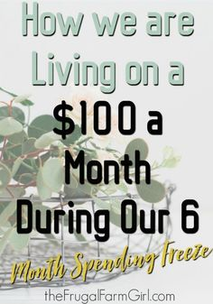 Are you on a tight budget? Learn how we are living on a $25 a week budget. We only spent $100 a month for 6 months. All for the farm.  via @frugalfarmgrl