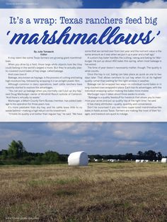 Have you seen the larger-than-life marshmallows? They look like they belong in the world's largest s'more. But they're actually round bales of hay silage. And cows love it! Watch the video and learn more in our Texas Neighbors publication
