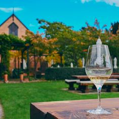 Cheeky Wine Tours (@cheekywinetours) • Instagram photos and videos White Wine, Alcoholic Drinks, Tours, Photo And Video, Videos, Glass, Photos, Instagram, Liquor Drinks