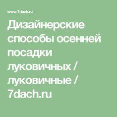 Дизайнерские способы осенней посадки луковичных / луковичные / 7dach.ru