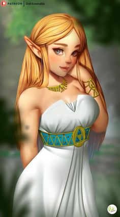 Princess Zelda by Didi Esmeralda | The Legend of Zelda: Breath of the Wild | Know Your Meme
