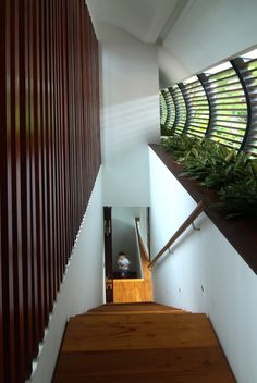 Dalvey Estate by Aamer Architects in Singapore - photo: Amir Sultan.   shading, ventilation, light.