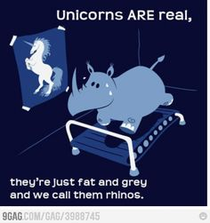 Enjoy this rhino-unicorn meme. Never give up on your dreams. Go rhino! You can change into a unicorn! Rhino Animal, Me Quotes, Funny Quotes, Dream Quotes, Funny Memes, Humour Quotes, Hilarious Sayings, Funniest Quotes, Funny Slogans