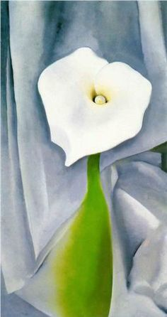 Breaking Bad: some of her paintings are like vaginas - Georgia O'Keeffe. Calla Lily on Grey, 1928