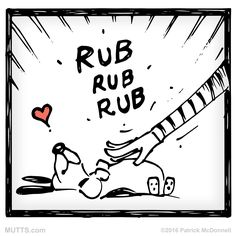 Coming to the end January. But still time for a #bellyrub! #MUTTSManifesto
