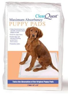 $47.45-$63.99 Max Absorbency Pet Puppy Pads - US193 99 Size: 100 Per Box  Features: -Absorbency puppy pads. -To keep your home clean and floors protected throughout the day. -Great for stay - at - home pets, multiple - puppy households, and incontinent pets. -Maximum absorbency puppy pads absorb 200 times their weight in liquid. -Pads neutralize odors and are specially scented to attract dogs. -A ...