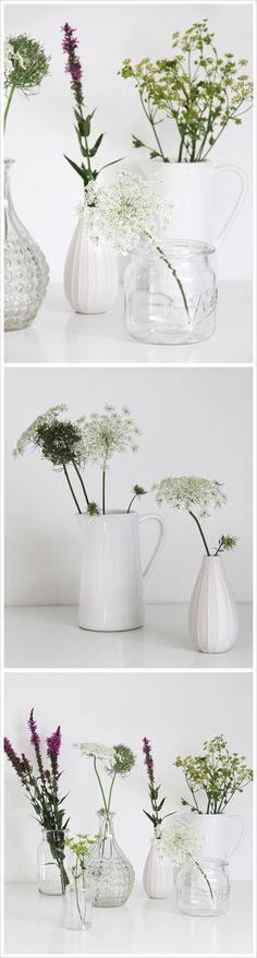 ber ideen zu wiesenblumen auf pinterest wildblumen blumen und gr ser. Black Bedroom Furniture Sets. Home Design Ideas