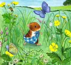Cute illustrations - field mouse
