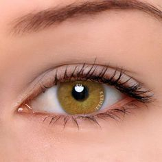 Full with exotic, Polar Light Grey contact lenses bring you explore and feel naivety. Pure light grey like polar lights, remind you of your curiosity in childhood. Big and natural eyes all in Polar Light Grey color contact lenses. Green Contacts Lenses, Green Colored Contacts, Grey Contacts, Lenses Eye, Natural Color Contacts, Brown Contact Lenses, Circle Lenses, Color Lenses, Peeling