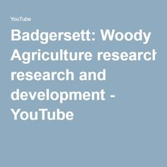 Badgersett: Woody Agriculture research and development - YouTube