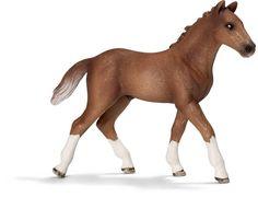 Image of Hanoverian Foal