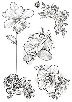 Floral designs , awesome ideas for your next tattoo, next bujo page ornaments or just an inspiration for a creative embroidery pattern – endless possibilities here! Enjoy 😉 __ Source by Forearm Flower Tattoo, Flower Tattoo Drawings, Tattoo Design Drawings, Flower Tattoos, Tatto Floral, Floral Tattoo Design, Flower Tattoo Designs, Floral Designs, Flash Art Tattoos