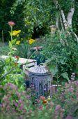 GPYO02-00000118-001 Bins in garden