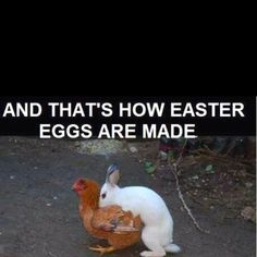 And That's how easter eggs are made :=)