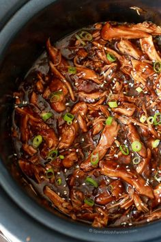 Simple and quick Honey Garlic Chicken made in your slow cooker! An easy meal sure to be a hit with the whole family!