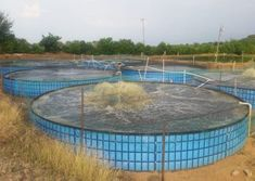 Lérida (Tolima)   Sistemas Acuícolas Koi Fish Care, Aquaponics, Outdoor Decor, Tilapia, Culture, Fish Farming, Crafts To Make, Houses, Blue Prints