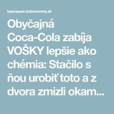 Obyčajná Coca-Cola zabíja VOŠKY lepšie ako chémia: Stačilo s ňou urobiť toto a z dvora zmizli okamžite! Coca Cola, Coke, Cola