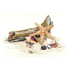 Sea illustrations / GOLD STAR, seascape watercolor by Thomas A Needham found on Polyvore