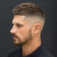 Crew Cut + High Bald Fade + Shape Up