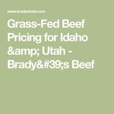 Grass-Fed Beef Pricing for Idaho & Utah - Brady's Beef
