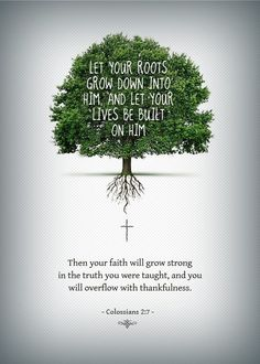 Jeremiah 17;7-8 also speaks of the roots and I try to reflect everyday on the roots...
