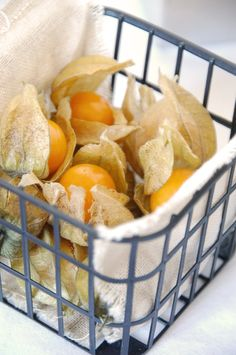 these too....heirloom cape gooseberries