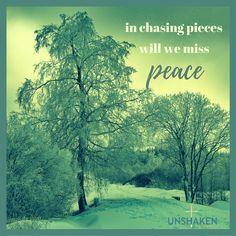 #chasingpeace #brokenpieces #piecesofpeace #Advent #PRINCEofPEACE #puttingthepiecestogether