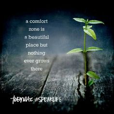 A comfort zone is a  beautiful place, but nothing ever grows there. TobyMac