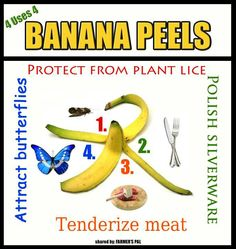 4 uses for banana peels (comedy acts not included) Banana Peel Uses, Banana Peels, Comedy Acts, Allrecipes, Farmer, Helpful Hints, Acting, Fruit, Natural