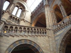 The National History Museum London