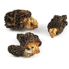 Frozen Morel Mushroom 1 kg @ https://houseofcaviarandfinefoods.com/mushrooms/frozen-morel-mushroom-detail #caviar #blackcaviar #finefoods #gourmetfoods #gourmetbasket #foiegras #truffle #italiantruffle #frenchtruffle #blacktruffle #whitetruffle #albatruffle #gourmetpage #smokedsalmon #mushroom #frozenporcini #curedmeets #belugacaviar #ossetracaviar #sevrugacaviar #kalugacaviar #freshcaviar #finecaviar #bestcaviar #wildcaviar #farmcaviar #sturgeoncaviar #importedcaviar #domesticcaviar