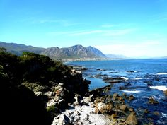 The Hermanus Cliff Path is world renowned and visitors can stroll along the breathtaking cliff paths hugging of coastline. Beach Villa, Whale Watching, Cliff, South Africa, Paths, Coast, Mountains, World, Nature