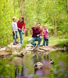 Family-Feeding-Ducks-01-(1)