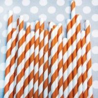 Striped Paper Straws in Juicy Orange - perfect for a woodland party