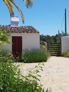 Quinta do Pomarinho, Alentejo, Portugal. Stay here and enjoy peace and quiet in a beautiful environment, where you can also enjoy walking and biking http://www.organicholidays.com/at/1504.htm