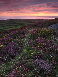 Rosewall Hill, St Ives, Cornwall