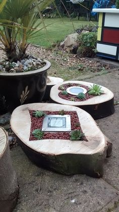 Hot Pots and Planters Log Planter, Wood Planters, Garden Planters, Succulents Garden, Garden Art, Garden Stairs, Garden Projects, Garden Inspiration, Container Gardening